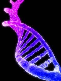 dna-pic