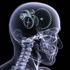 health-brain