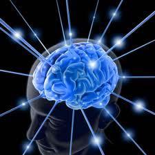 my-brain